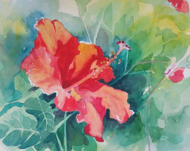 ruthkaldor_hibiscus.jpg