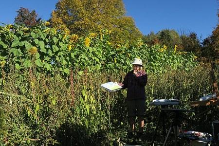 sunflowerautumnruth_600